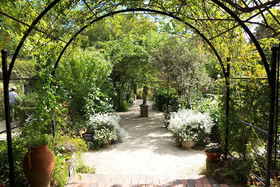 english_garden-05.jpg