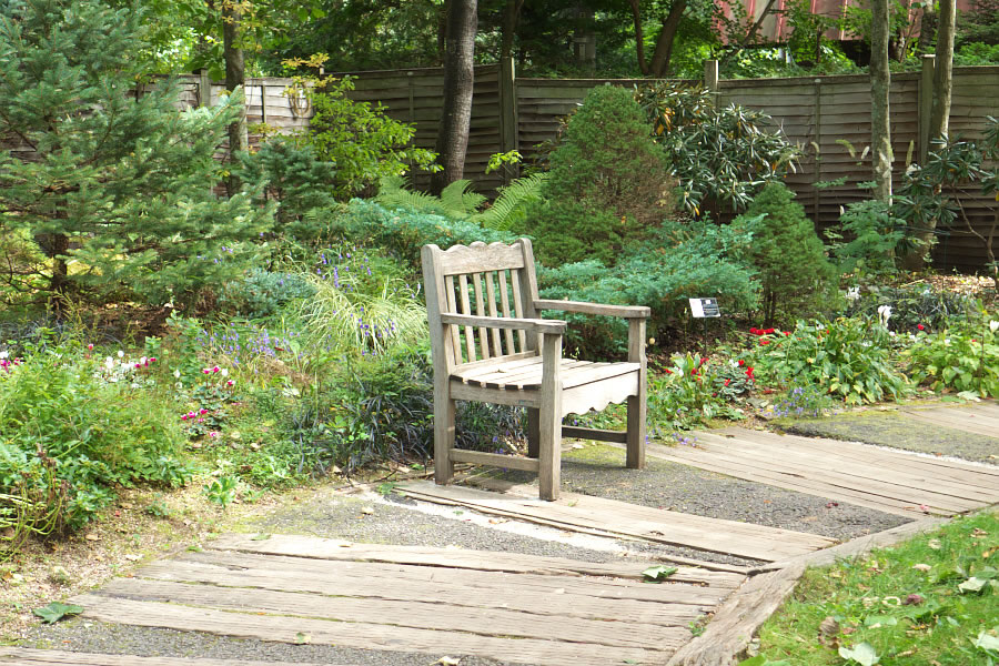 english_garden-07.jpg